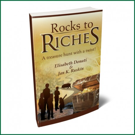 Rocks to Riches Financial Adventure Book for Kids/Teens - PDF