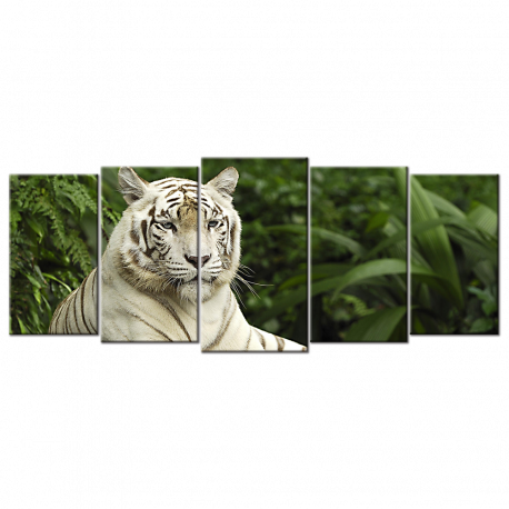Singapore Tigris Panthera Tiger  - 5 panels L