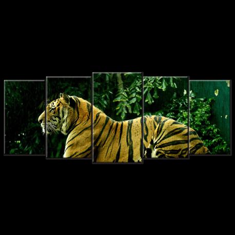 Tiger - 5 panels