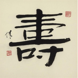 """Chinese Calligraphy """"Long and Healthy Life"""""""