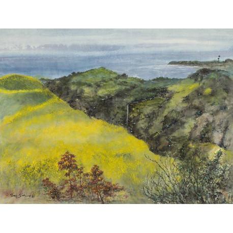 """""""Western Landscapes"""" Nature's Splendor"""