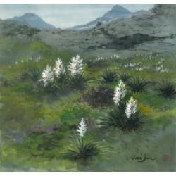 "Western Landscapes ""Desert Warrior"""