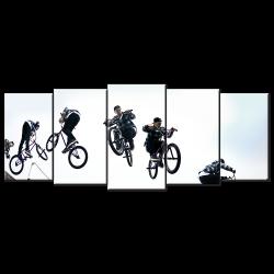 BMX Stunt- 5 panels XL