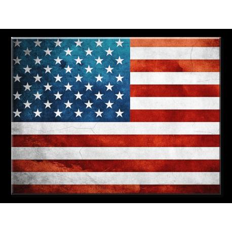 American Flag- 1 panel xl