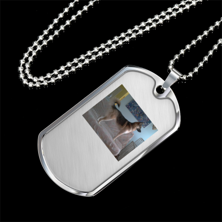 Guardian of the Couch (Silver Dog Tag)