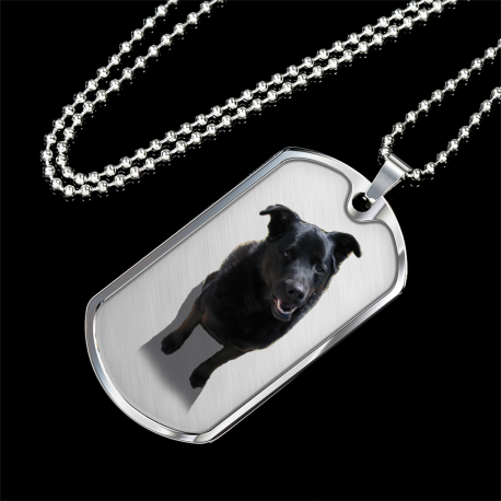 Black Lab (Silver Dog Tag)