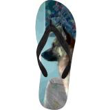 Flip Flops - Malamute Mix (Limited Edition)