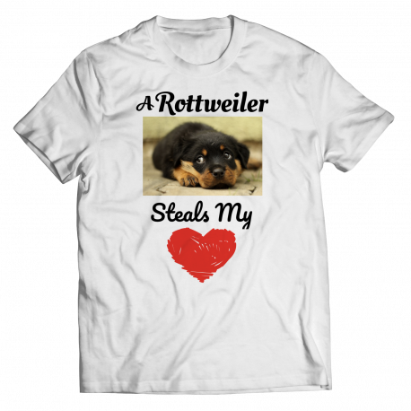 A Rottweiler Steals My Heart