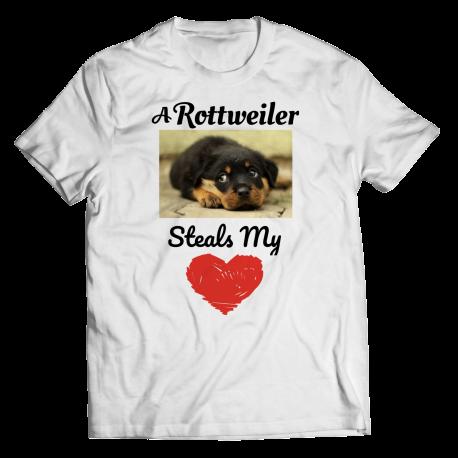 A Rottweiler Steals My Heart