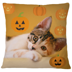Pumpkin Kitty Pillow Case
