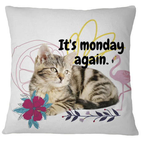 Pillow Case Cover - monday again