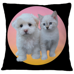 Pillow Case Cover -Puppy and Kitty