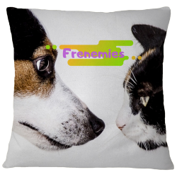 Frenemies Pillow Case Cover