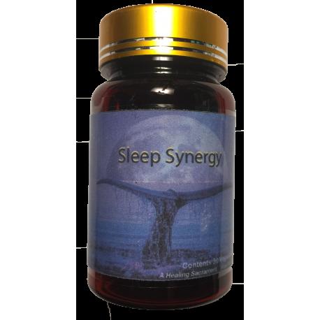 Sleep Synergy