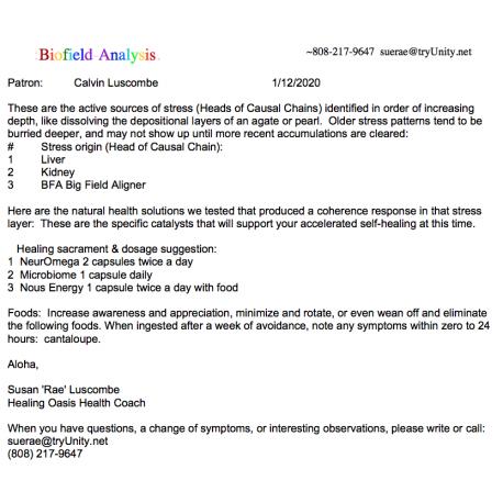 Biofield Analysis Summary Report