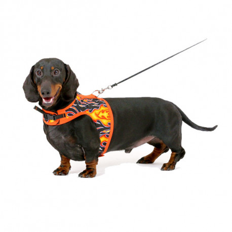 Hug-A-Dog Harnesses