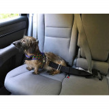 The Doggie Catcher™