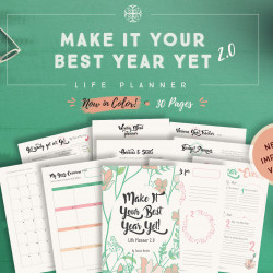 Make It Your Best Year Yet Life Planner (Color)