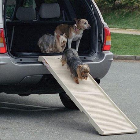 PetStep Folding Dog Ramp