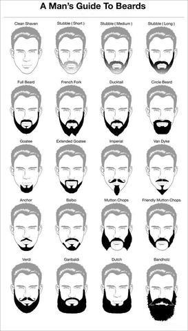 Beard shaping tool directions