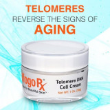 Telomere DNA Cell Face Cream