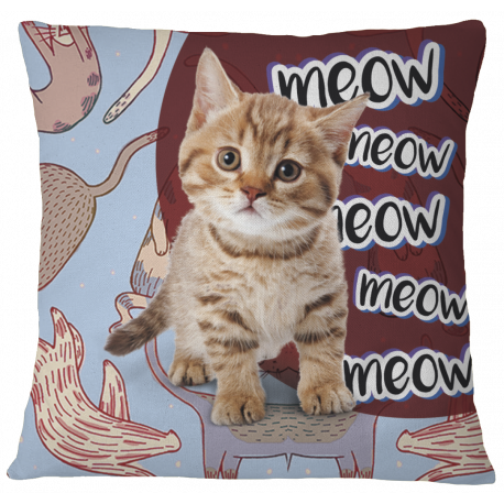 Cats Meow Pillow Case Cover - White