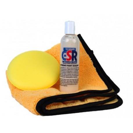 Paint Sealant Kits