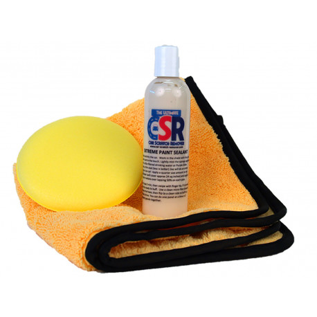 12 Month Protection Professional Sealant Kit