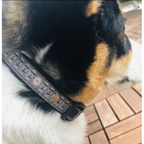 Dog EMF Protection Kit